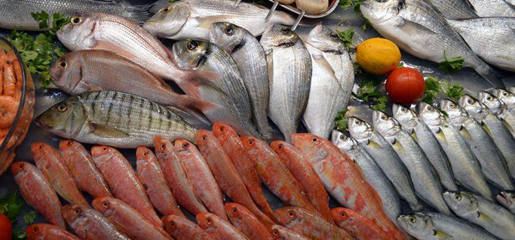Hisar Balık Pişiricisi